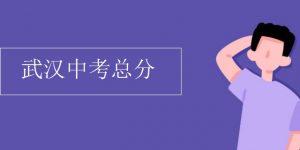 武汉中考总分插图