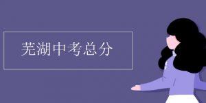芜湖中考总分插图