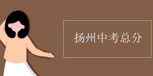扬州中考总分插图